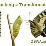 coaching transitions
